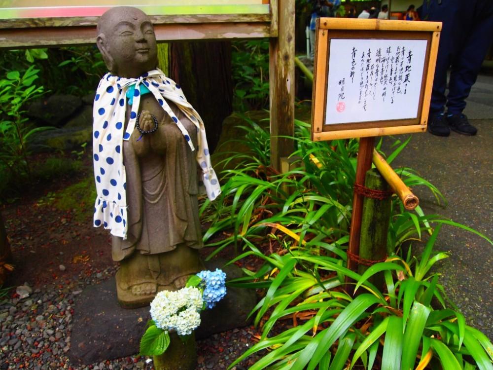 鎌倉紫陽花4_mini-1024x768