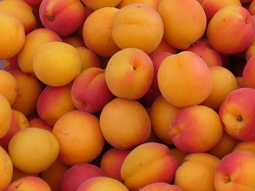 Apricots-Cancler